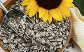 Как правильно есть семечки подсолнуха