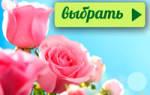 Как оформить цветочную клумбу правильно подобрать цветы