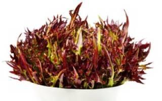 Как правильно есть листья салата