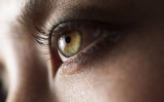 Как правильно красить тенями зеленые глаза