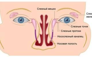 Как правильно делать массаж глаз новорожденному видео